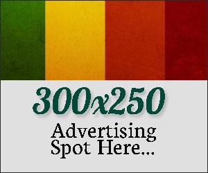 300 x 250 reklam alanı